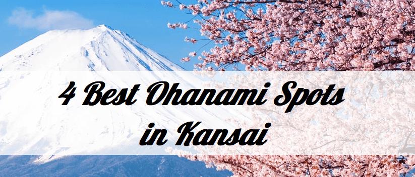 4 Best Ohanami Spots in Kansai