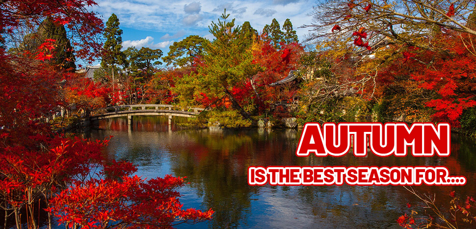 Autumn in Japan is the Best Season for...