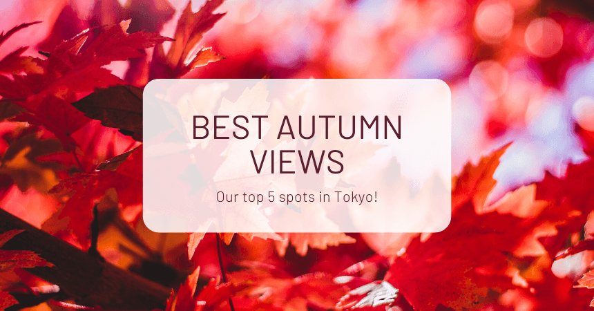 Best Autumn Views: Our Top 5 Spots in Tokyo