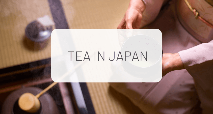 Some Things You Should Know About Tea
