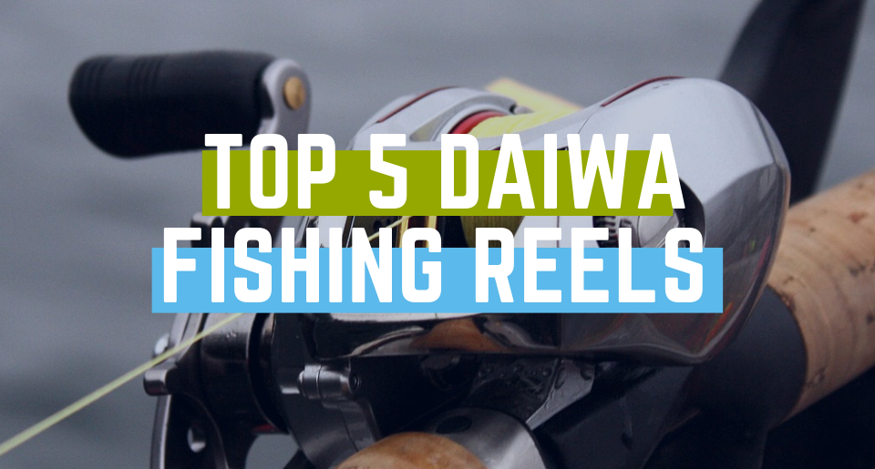 Top 5 Daiwa Fishing Reels